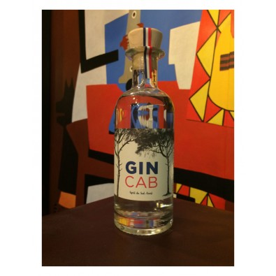 Bouteille de London Dry Gin - Gin Cab